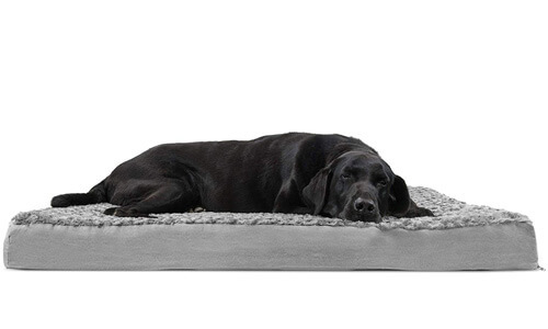 giant dog beds great danes