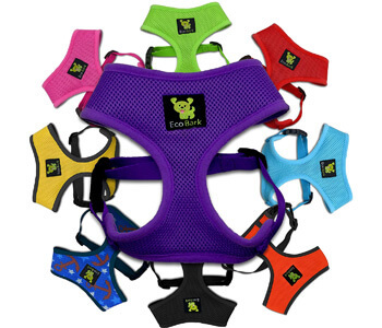 Best Dog Harness For Yorkies