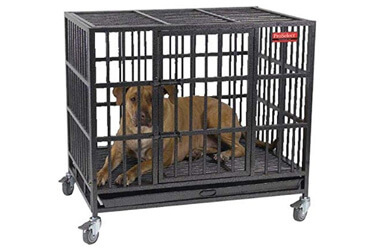 ProSelect Empire Great Dane Dog Cage