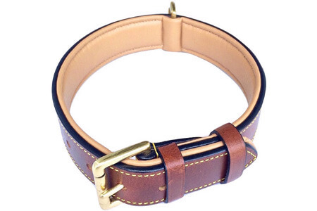 best dog collars for great danes
