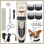 Best Dog Clippers for Dachshunds