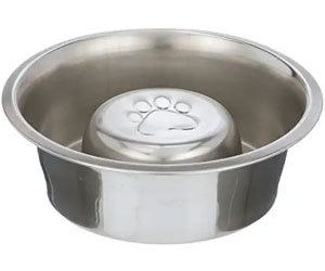 Neater Pet Brands Slow Feed Bowl