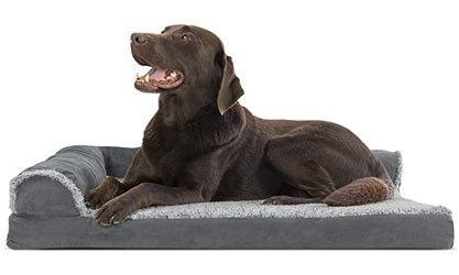 best dog bed for large goldendoodle