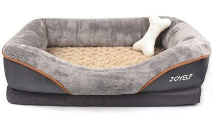 Best Dog Beds for Shih Tzu Puppies